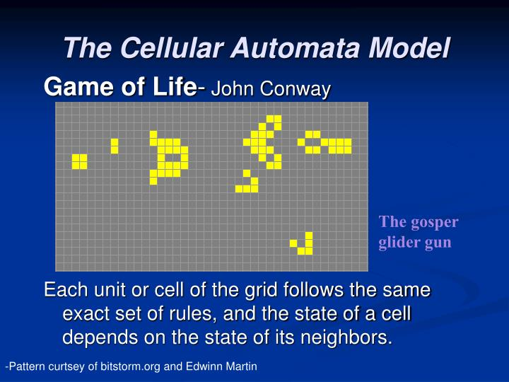 The Cellular Automata Model