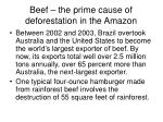 beef the prime cause of deforestation in the amazon