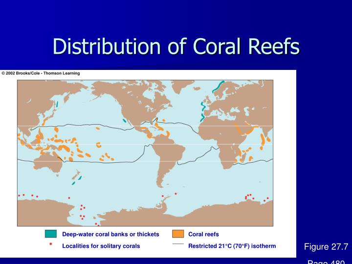 Distribution of Coral Reefs