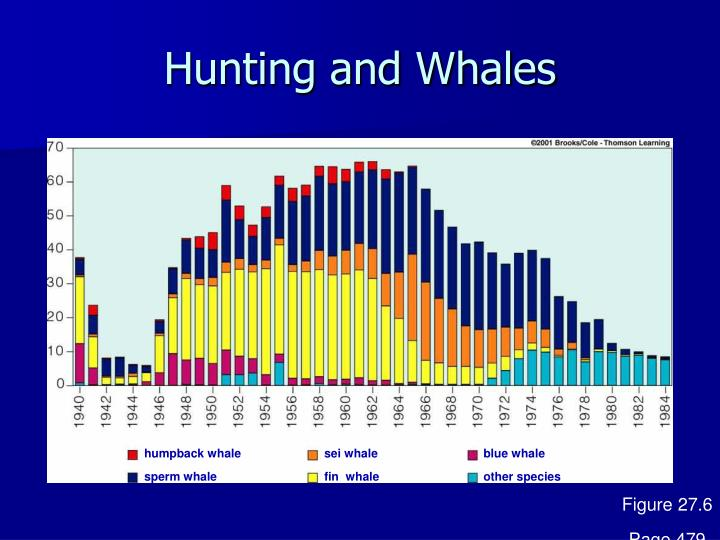 Hunting and Whales