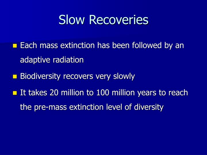 Slow Recoveries