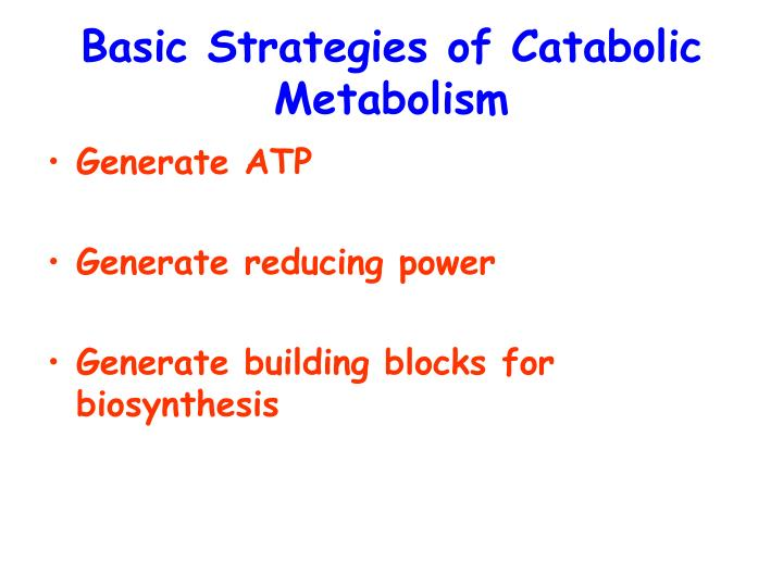 Basic strategies of catabolic metabolism