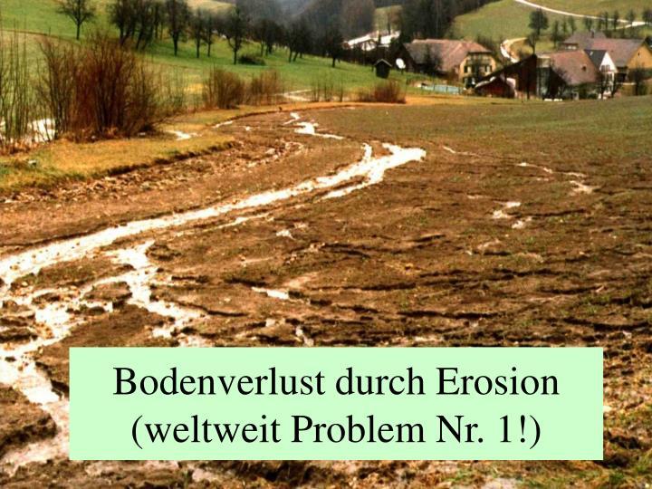 Bodenverlust durch Erosion