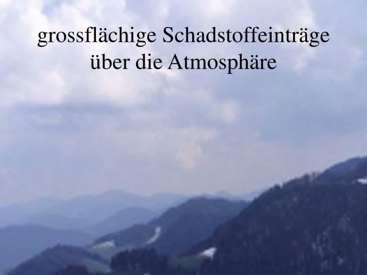 grossflächige Schadstoffeinträge über die Atmosphäre