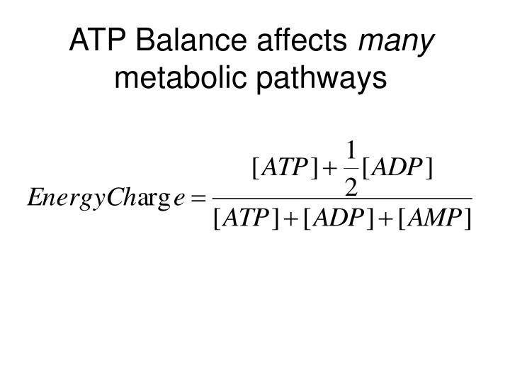 ATP Balance affects