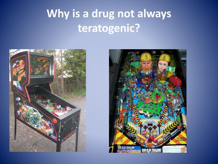Why is a drug not always teratogenic?