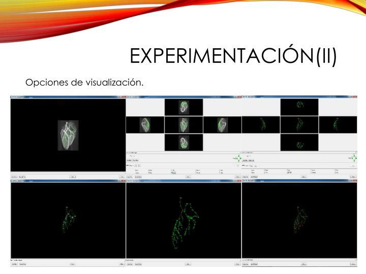 experimentación(II)