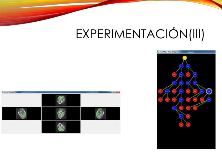 Experimentación(III)