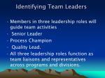 identifying team leaders