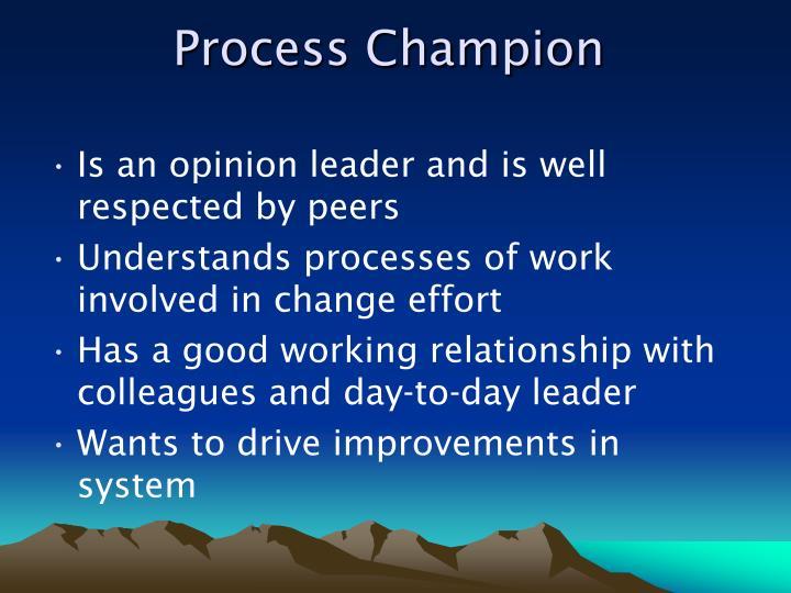 Process Champion