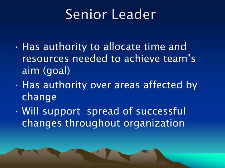 Senior Leader