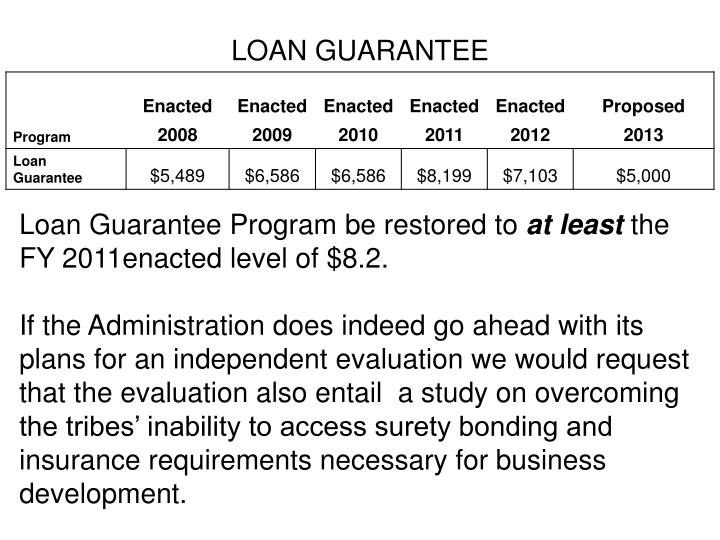 LOAN GUARANTEE