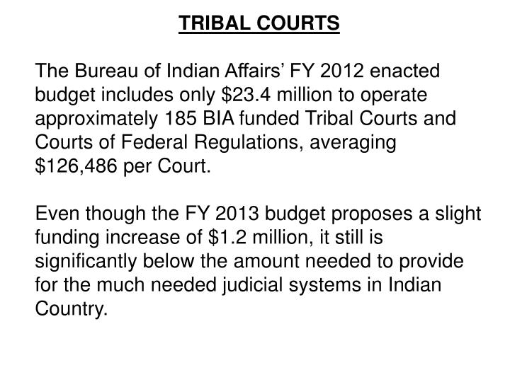 TRIBAL COURTS