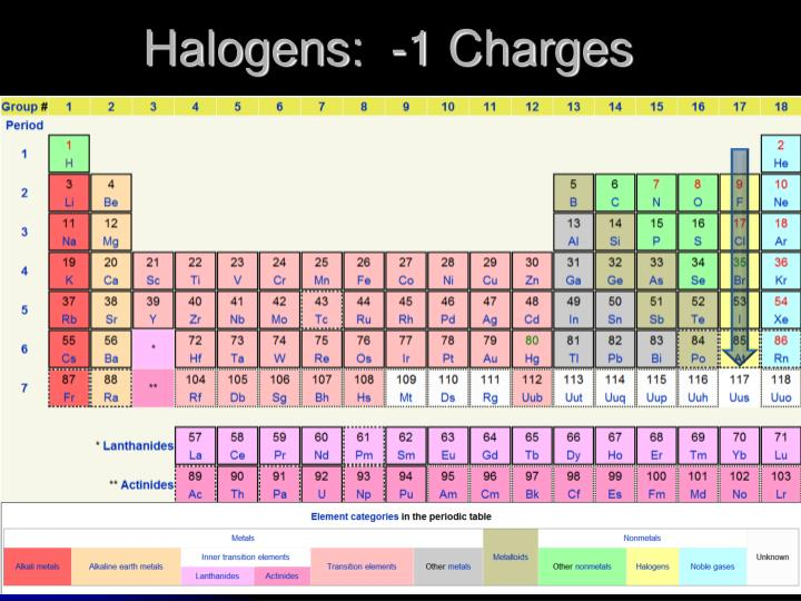 Halogens:  -1 Charges