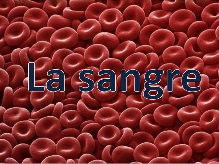 La sangre