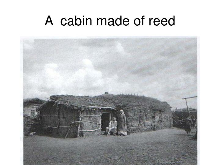 A  cabin made of reed