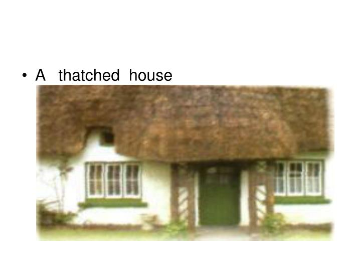 A   thatched  house