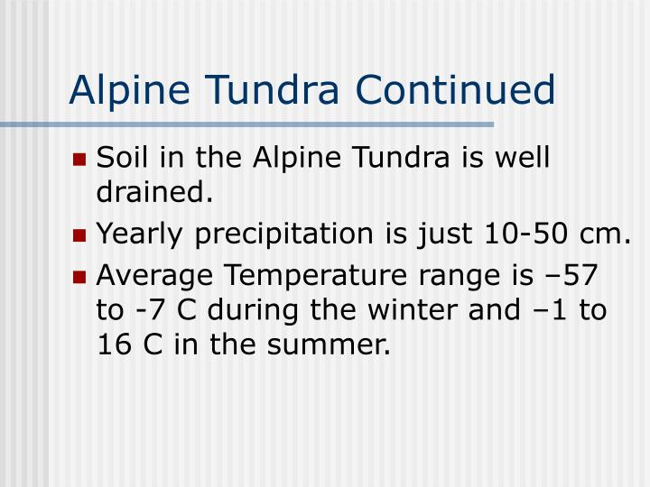 Alpine Tundra Continued