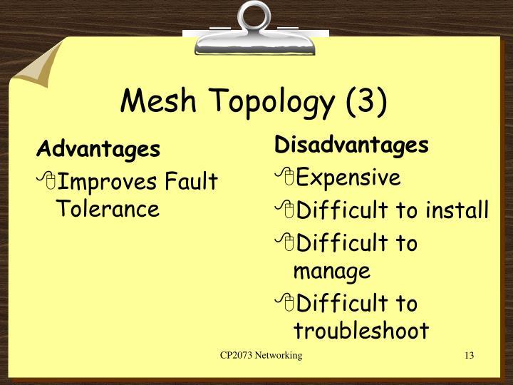 Mesh Topology (3)