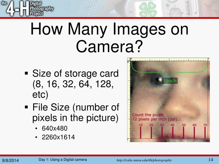 How Many Images on Camera?