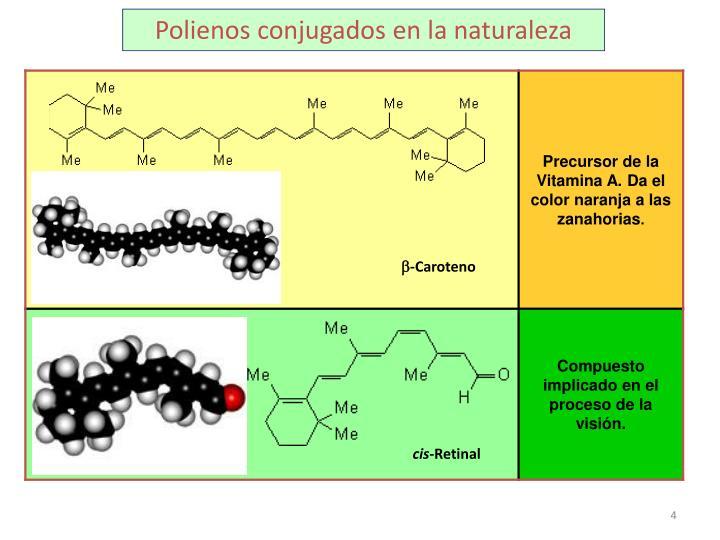Polienos conjugados en la naturaleza