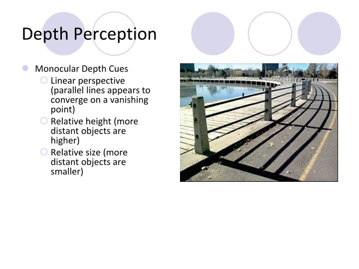 depth perception Successful improvement of two-eyed depth perception with vision therapy.