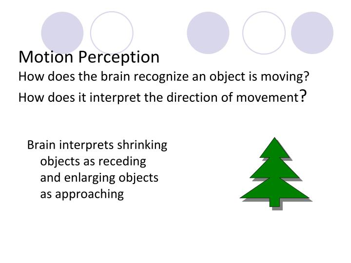 motion perception movement of objects Motion perception is the process of inferring the  movements of the eyes and movements of objects in the  order motion perception visual motion.