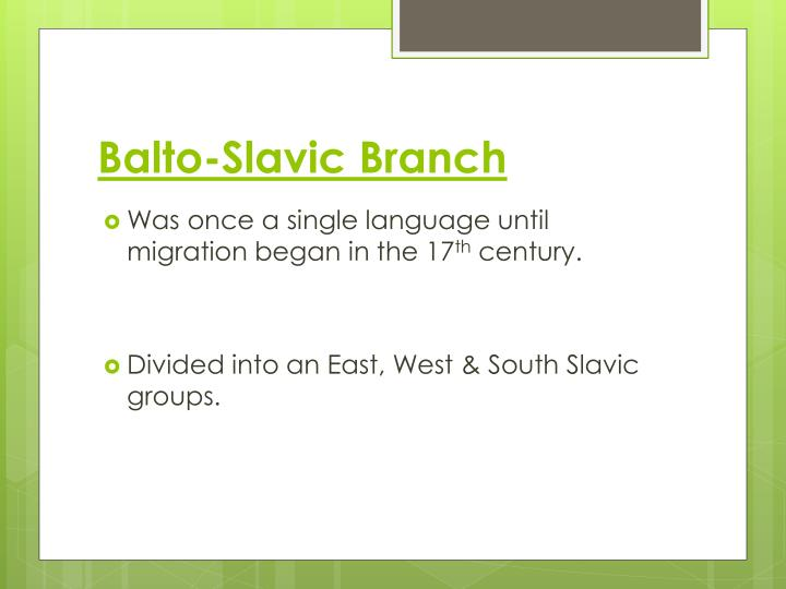 Balto-Slavic Branch