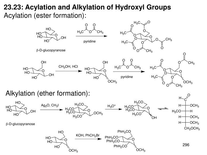 23.23: Acylation and Alkylation of Hydroxyl Groups