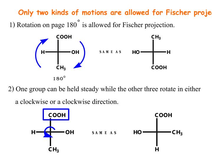 Only two kinds of motions are allowed for Fischer projection.