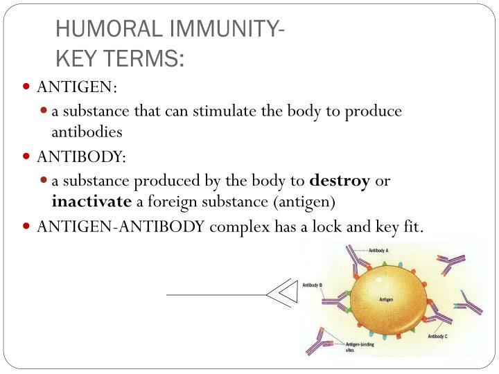 HUMORAL IMMUNITY-