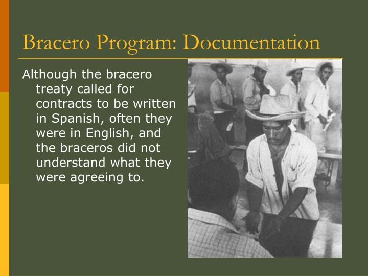 the bracero program The bracero program, officially named the labor importation program, was created for economic reasons in the 1930s, white anglos farmers had decided to move in to the more urban and industrious cities in order to gain more wealth than what they had been earning working their crops.