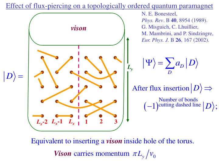 Effect of flux-piercing on a topologically ordered quantum paramagnet