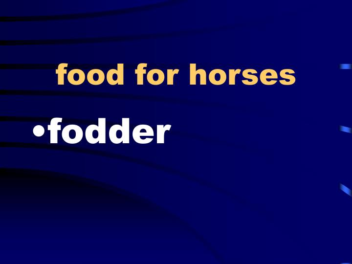 food for horses