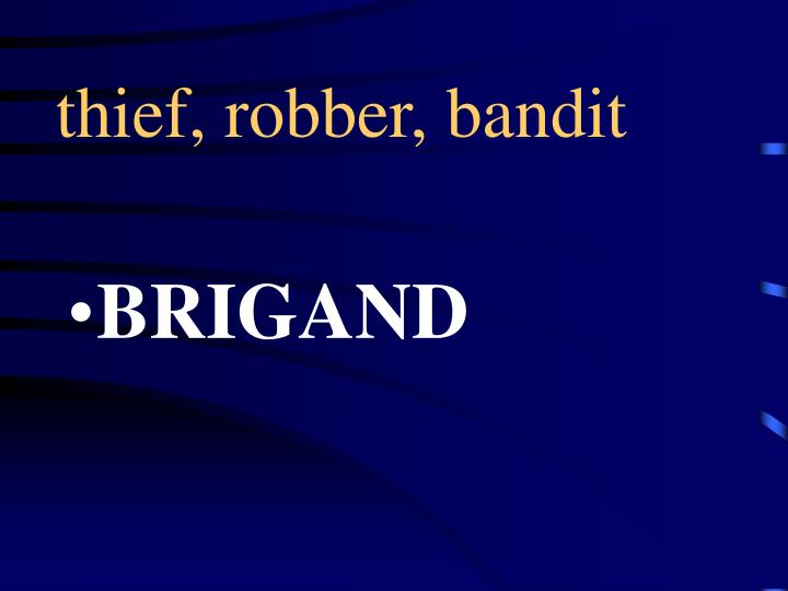 thief, robber, bandit