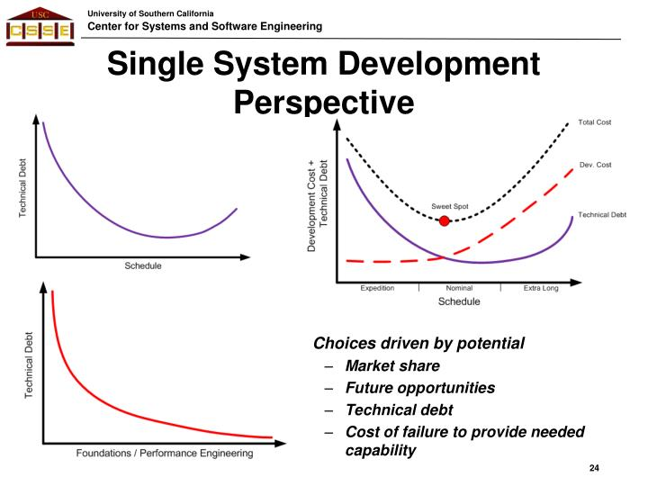 Single System Development Perspective