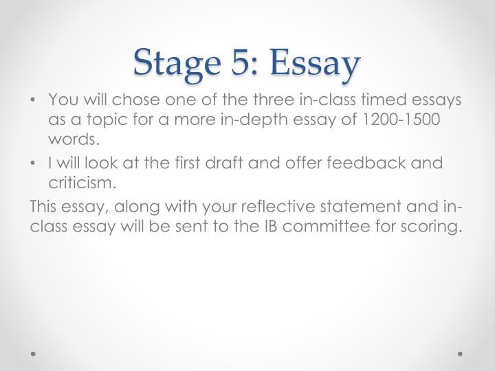 Stage 5: Essay