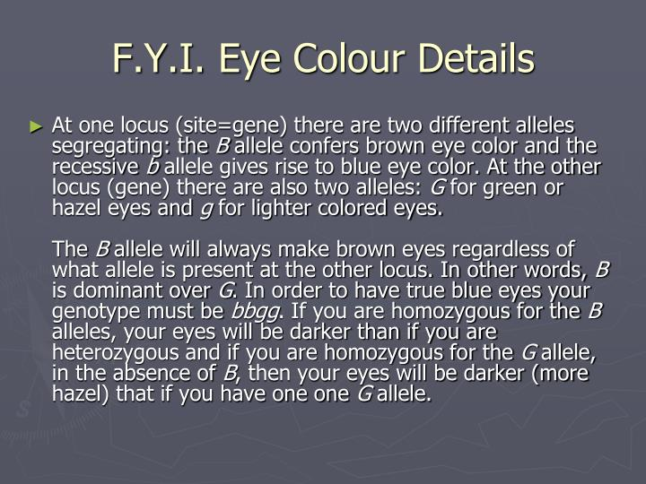 F.Y.I. Eye Colour Details