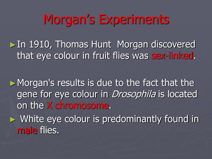 Morgan's Experiments