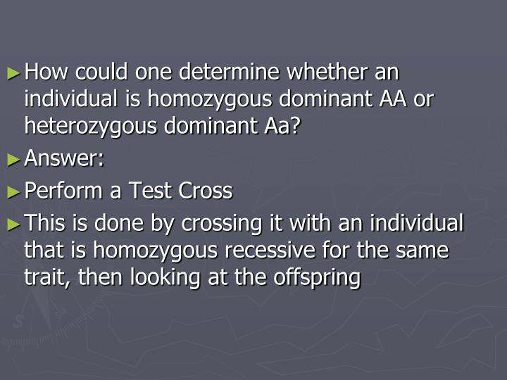 How could one determine whether an individual is homozygous dominant AA or heterozygous dominant Aa?