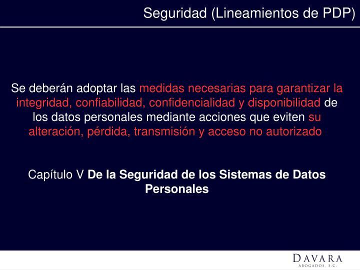 Seguridad (Lineamientos de PDP)
