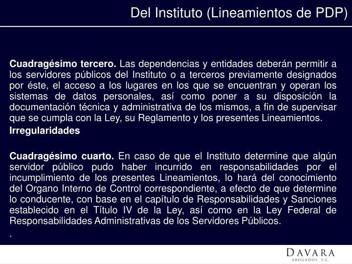 Del Instituto (Lineamientos de PDP)