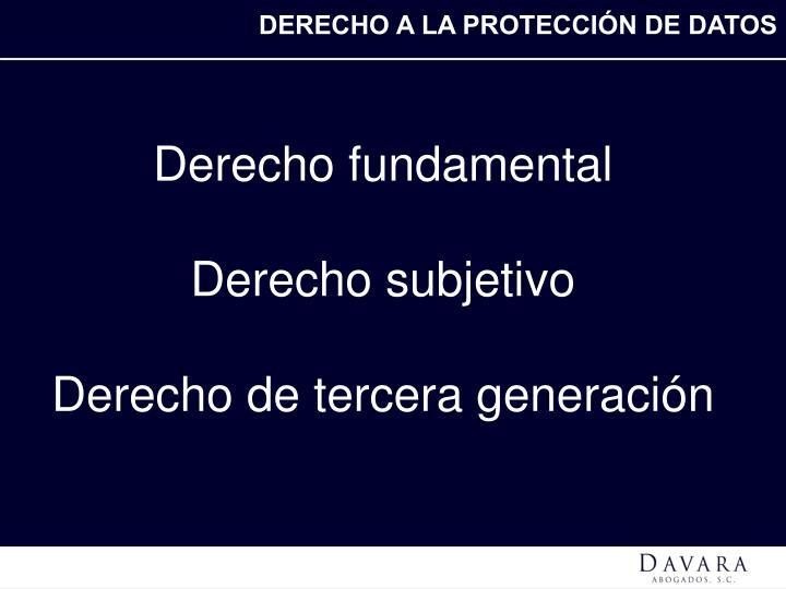DERECHO A LA PROTECCI