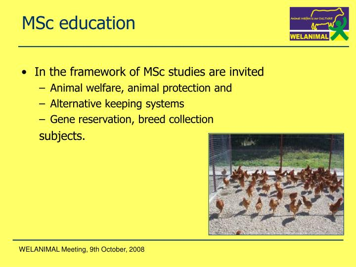 MSc education