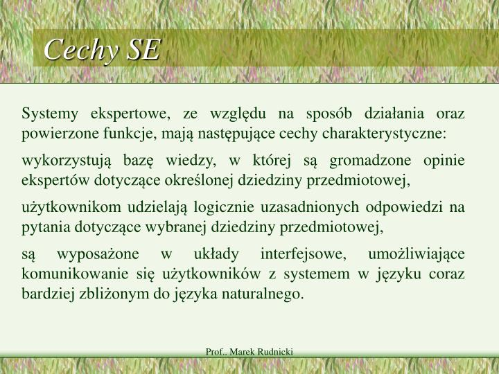 Cechy SE