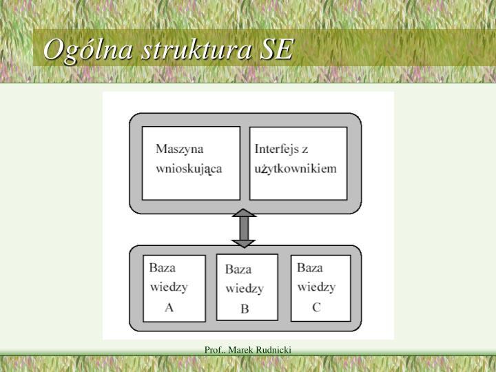 Ogólna struktura SE