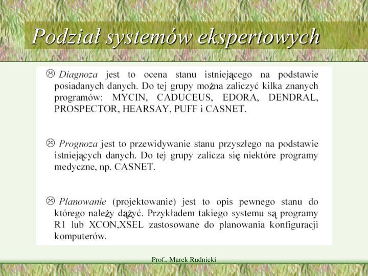 Podział systemów ekspertowych