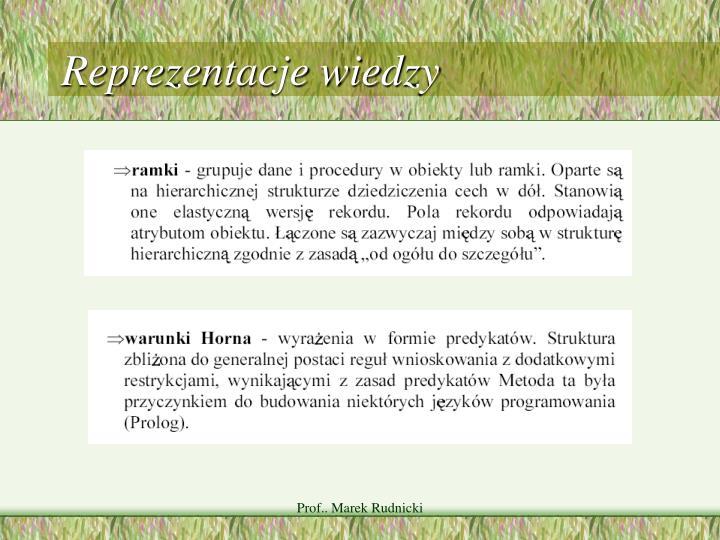 Reprezentacje wiedzy