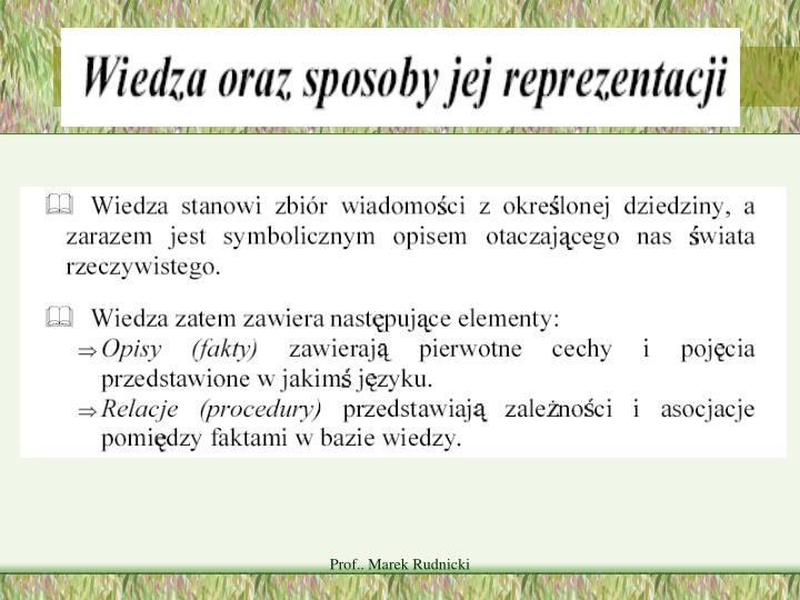 Prof.. Marek Rudnicki