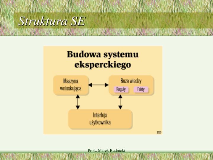 Struktura SE
